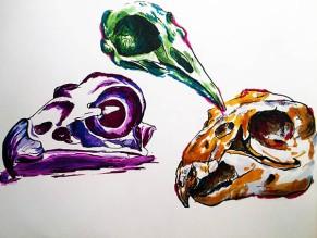 Traditional Skull Art