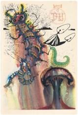 Salvador Dali, Advice From a Caterpillar