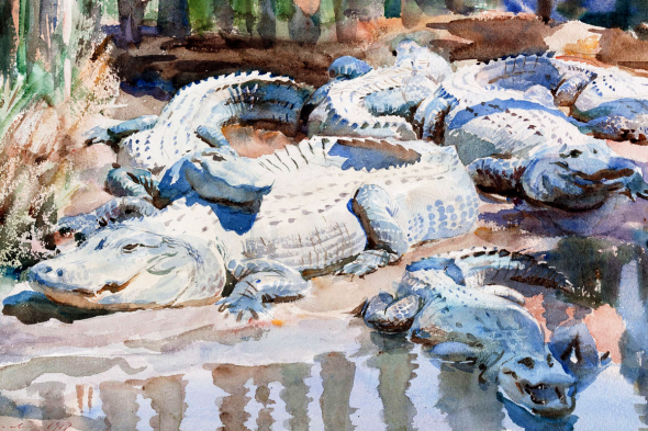 Muddy Alligators by John Sargent Close up