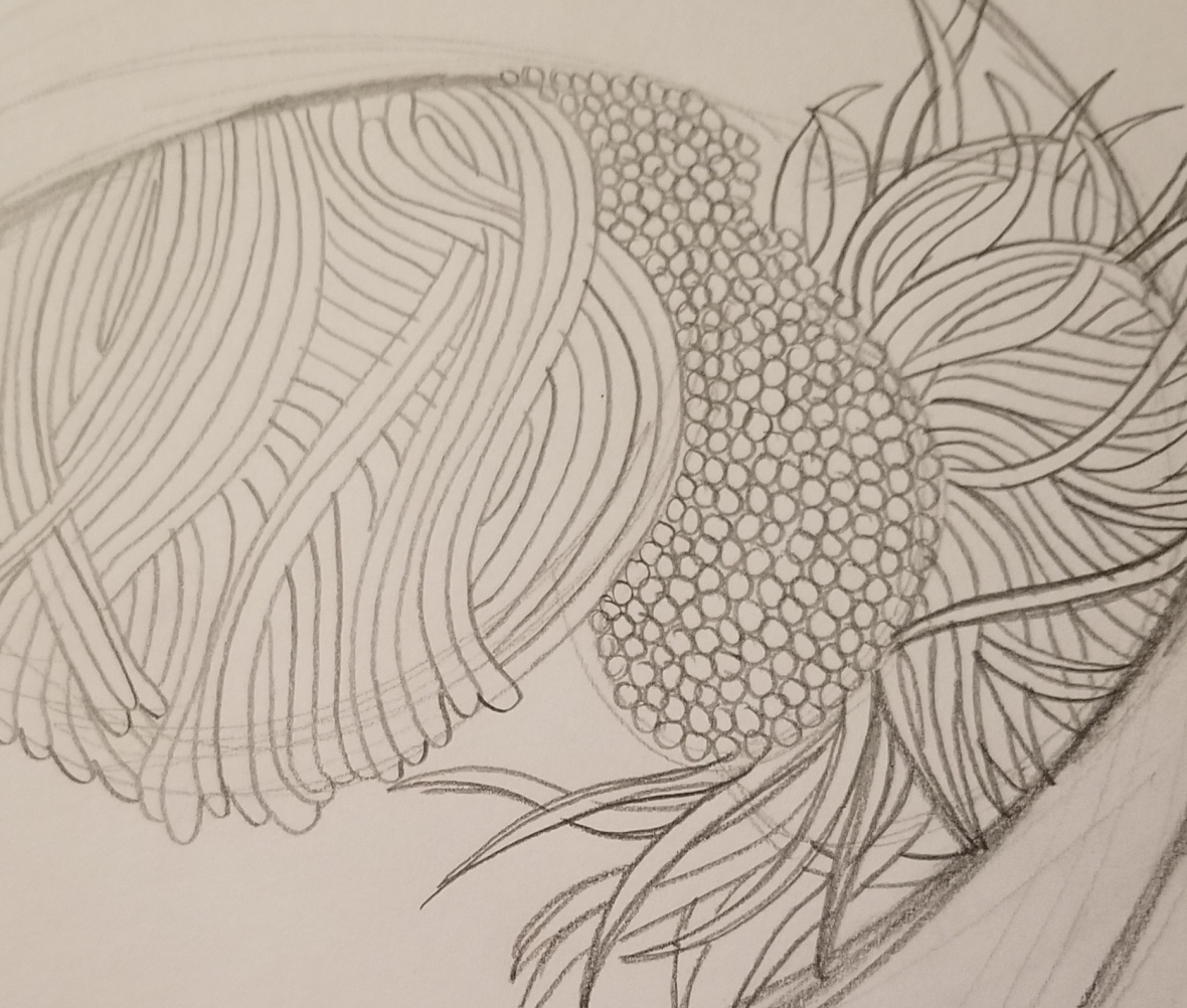 Drawing from biology